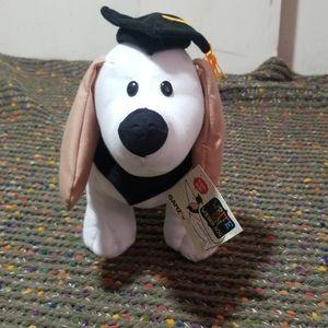 Graduation wiener dog